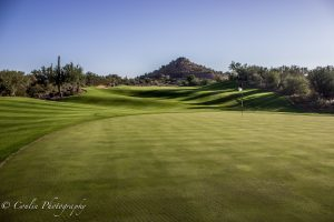 Conlin Photography Golf 20