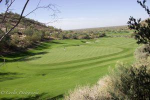 Conlin Photography Golf 4