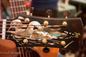 Conlin Photography Guitar 16