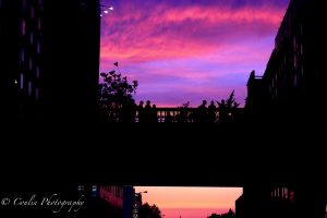 Conlin Photography Sunset 15