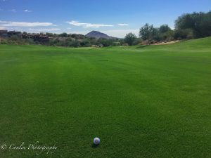 Conlin Photography Golf 39