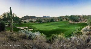Conlin Photography Golf 35