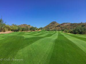 Conlin Photography Golf 37