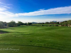 Conlin Photography Golf 36