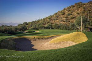 Conlin Photography Golf 33