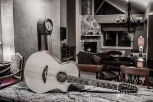 Conlin Photography Guitar 3