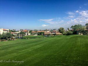 Conlin Photography Golf 34