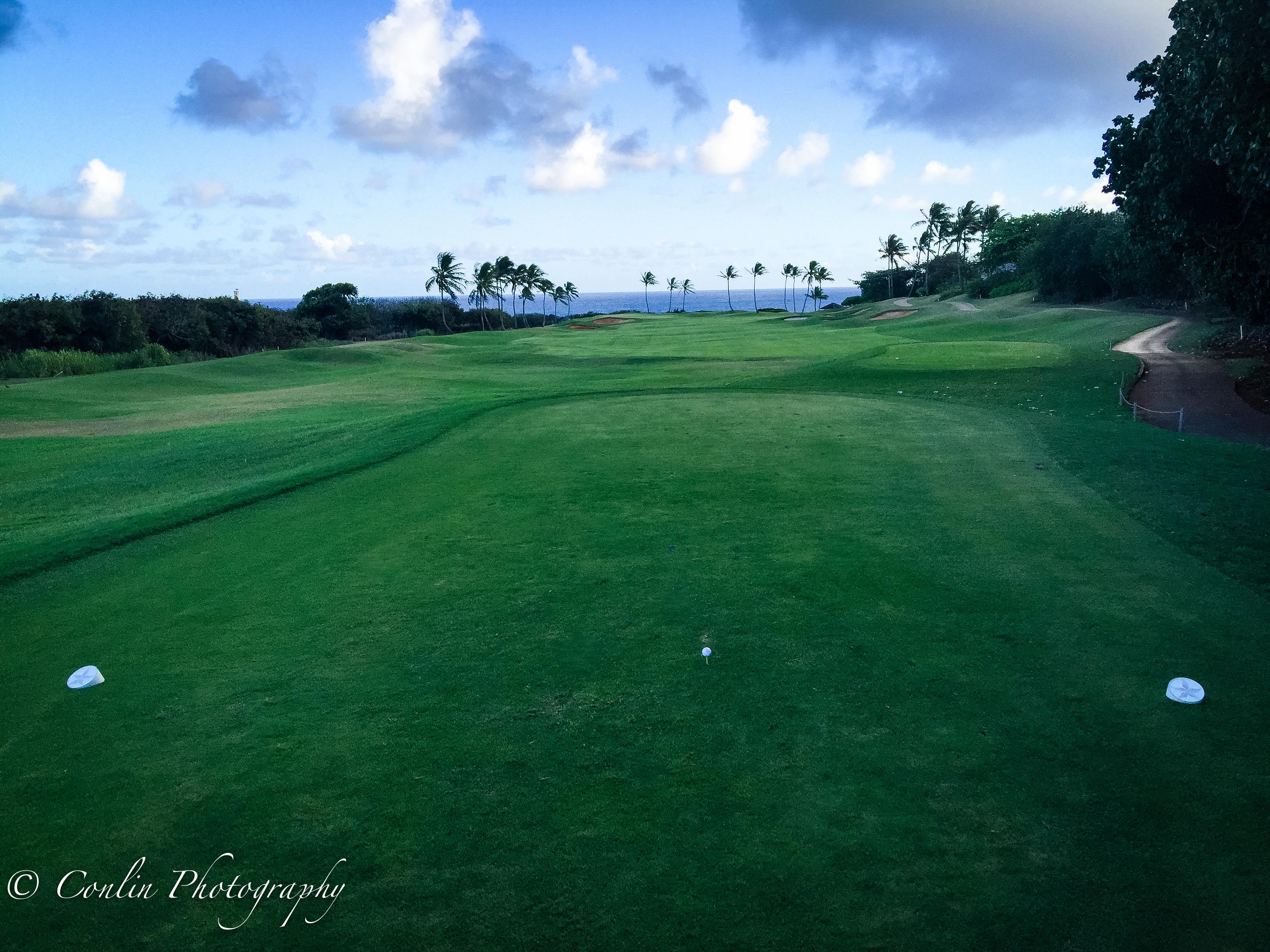 Conlin Photography Golf 28