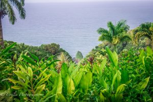 Conlin Photography Landscape 8