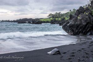 Conlin Photography Landscape 4