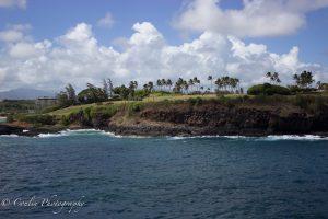 Conlin Photography Golf 23