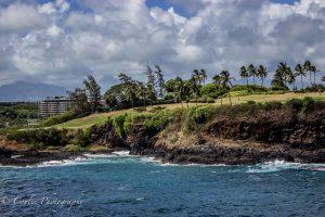 Conlin Photography Golf 22