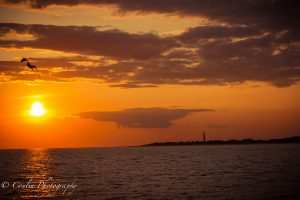 Conlin Photography Sunset 12