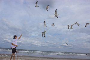 Conlin Photography Wildlife 4